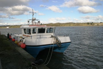 Southboats South Cat 11m mk 2 Island for sale