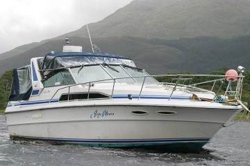 Sea Ray 340 for sale